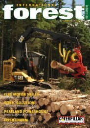 Issue 6 - October 2008 - International Forest Industries (IFI)