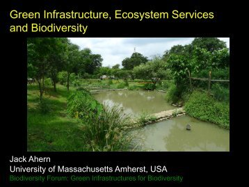 Green Infrastructure, Ecosystem Services and Biodiversity