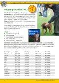 Wochenendmodul - Hundeschule GREH - Seite 6