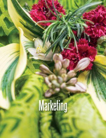 Marketing - Proven Winners