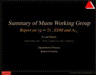 Summary of Muon Working Group - g-2 at Boston University Home ...