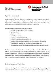 Konzeption des Job-Paten-Projektes Agentur für Arbeit Entstehung ...
