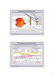 1 09 LED-Farbempfindlichkeit des Auges 2 Licht Rezeptoren des ...