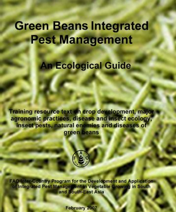 Green Bean Integrated Pest Management - Vegetableipmasia.org