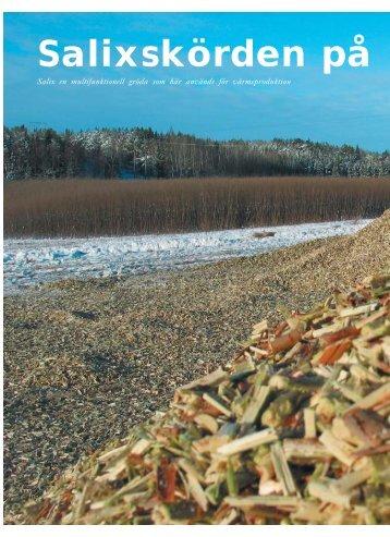 Salixskörd på Svartsjö - Novator