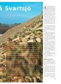 Salixskörd på Svartsjö - Novator - Page 2
