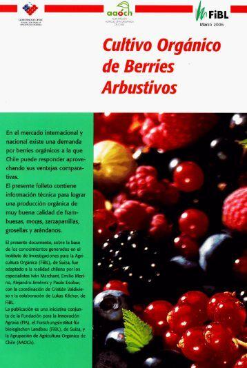 Cultivo Orgánico de Berries Arbustivos