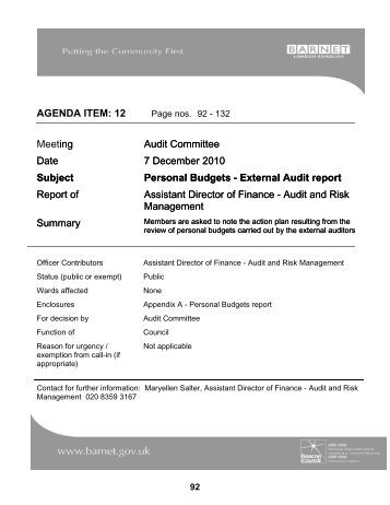 2013 February 14 Item 6 External Audit Progress Report Appendix