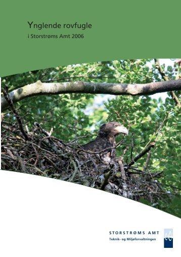 Ynglende rovfugle i Storstrøms Amt 2006 - DOF Storstrøm