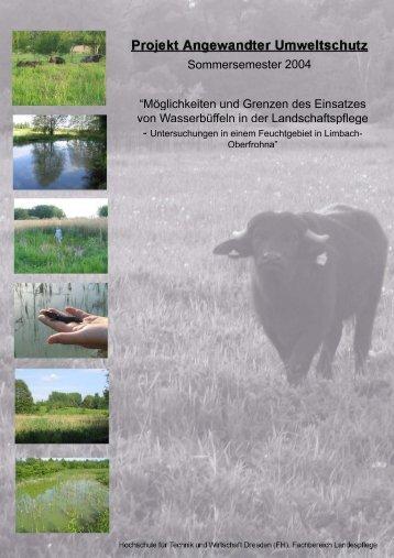 Projekt Angewandter Umweltschutz - Golden Buffalo GmbH