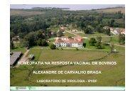 HOMEOPATIA NA RESPOSTA VACINAL EM BOVINOS ... - SOVERGS