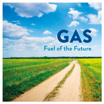 Fuel of the Future - Eurogas
