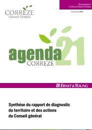Synthèse du rapport de diagnostic du territoire et des actions du ...