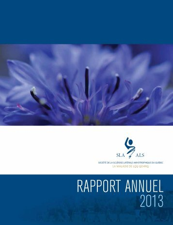 Rapport Annuel_2013_LR