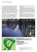 Hochwasserschutz am rheinland-pfälzischen Oberrhein Der Polder ... - Seite 5