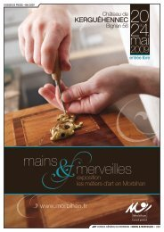 dossier de Presse • mai 2009 Conseil général du morbihan • Mains ...