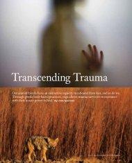 Transcending Trauma - The Trauma Center