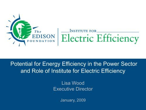 Potential for Energy Efficiency in the Power Sector and Role of ...