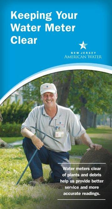 Keeping Your Water Meter Clear - American Water
