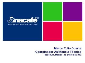 Situación Actual ANACAFE Guatemala