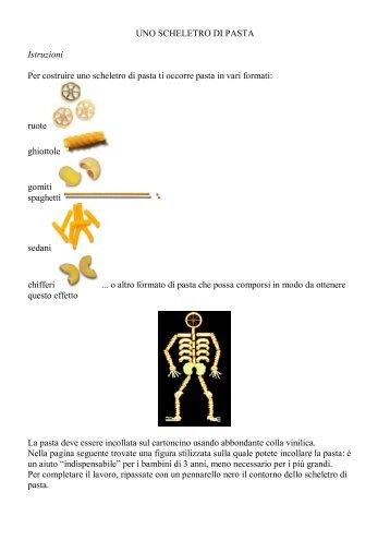 Uno scheletro di pasta - La Teca Didattica