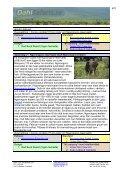Lake Manyara Ngorongoro Tarangire - Dahl Safaris - Page 4