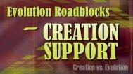 Origins - 446 Evolution Roadblocks - Creation Support.pdf