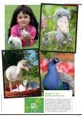 Wer mit Tieren zusammenlebt, lebt besser, sagt Bestseller-Autor ... - Seite 6