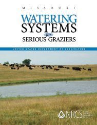 Watering Systems for Serious Grazers