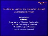Modelling, analysis and simulation through an integrated ... - CAPEC