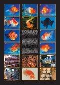 Les plantes aquatiques - Page 6