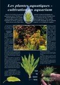 Les plantes aquatiques - Page 7