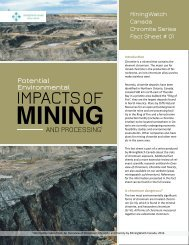 Potential impacts of mining and processing chromite. Fact Sheet 1