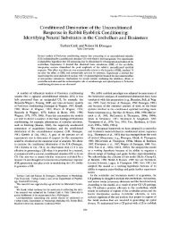 Conditioned Diminution of the Unconditioned Response in Rabbit ...