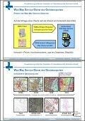 Geodatenportal Sachsen-Anhalt - LAGA - Page 5