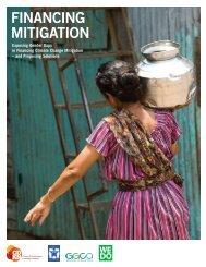financial-mitigation-factsheet
