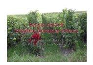 Benoît LAHAYE Viticulteur biologique à Bouzy - Union des ...