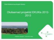 Olulisemad projektid EKUKis 2012-2013