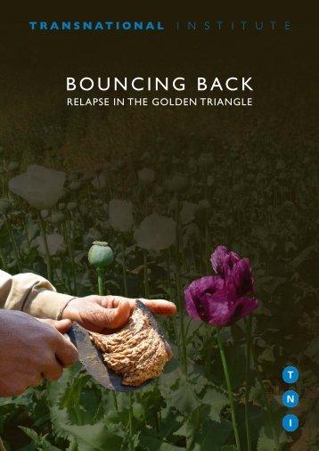 tni-2014-bouncingback-web-klein