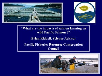 """What are the impacts of salmon farming on wild Pacific Salmon ..."