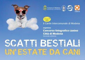 Leggi il regolamento del Concorso Fotografico - Comune di Modena