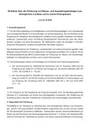 Richtlinie über die Förderung von Messe - Bundesprogramm ...