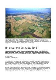 anmeldelse - Kjeld Hansen - BæreDygtighed