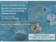 Enjeux et perspectives de l'imagerie en médecine nucléaire - Cenbg