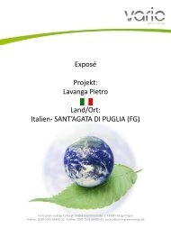 Lavanga Pietro - Vario green energy Concept GmbH