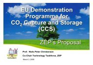 EU Demonstration Programme for CO Capture and Storage (CCS ...