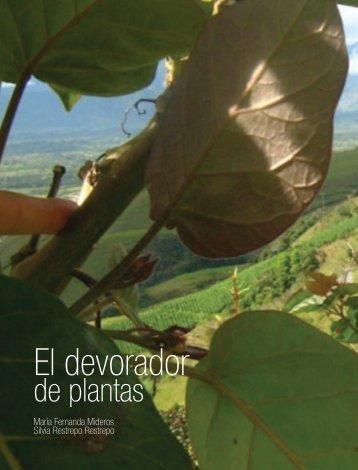 Devorador-de-plantas-16