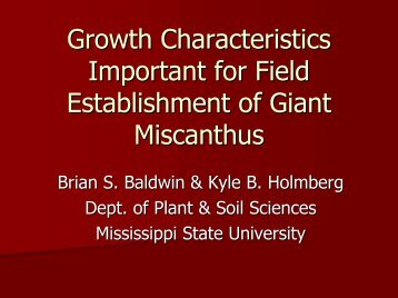 Growth Characteristics Important for Field Establishment of Giant ...