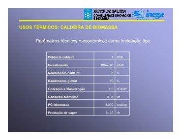 USOS TÉRMICOS: CALDEIRA DE BIOMASSA ... - Euromontana