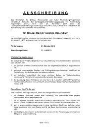 Ausschreibung CDF-Stipendium im WS 13/14